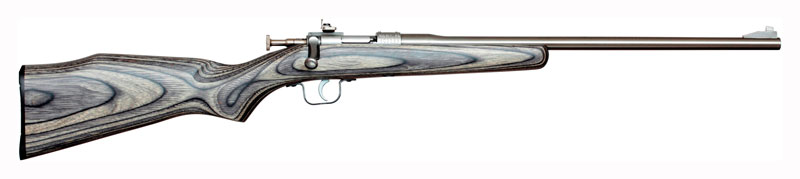 CHIPMUNK RIFLE .22LR STAINLESS/BLACK LAMINATE - for sale